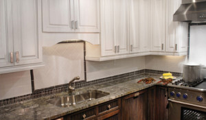 Kitchen Remodel Carrollwood FL
